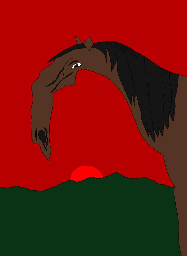beautiful-stallion